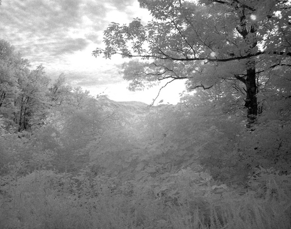 Smoky Mountains Infrared